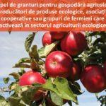 Concurs de granturi pentru agricultura ecologică