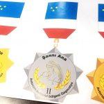 Многодетные матери из Гагаузской автономии будут награждаться памятными медалями
