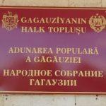Новый региональный закон об индивидуальном предпринимательском патенте принят депутатами Народного собрания Гагаузии