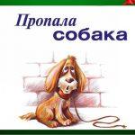 В микрорайоне «Флэмында» потерялась собака. Пекинес ищет своего хозяина