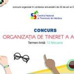 Национальный молодежный совет Молдовы предлагает молодёжным организациям участвовать в конкурсе «Молодёжная организация года»