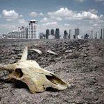 (VIDEO) С 1970 года человечество уничтожило 60 процентов животных на Земле