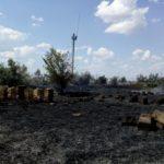 (ФОТО)  Спасатели потушили возгорание сухой растительности в Бессарабке