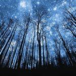 В августе жители Молдовы смогут наблюдать звездопад Персеиды
