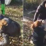 Избиение женщины в селе за кражу кроссовок.