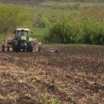 Сельхозпроизводители из Басарабяски несут убытки